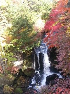 日光・竜頭の滝