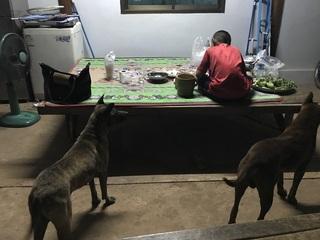 妻の実家の前で食事をする近所の親戚の子