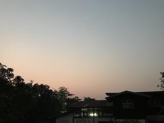 inaka20180422-4.jpg