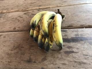 おじさんからもらったバナナ