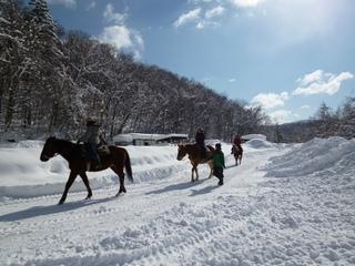 雪中の乗馬体験